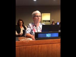 Em discurso durante a COSP12 na ONU, associada da AMPID, Dra. Maria Aparecida Gugel defende direitos das pessoas com deficiência